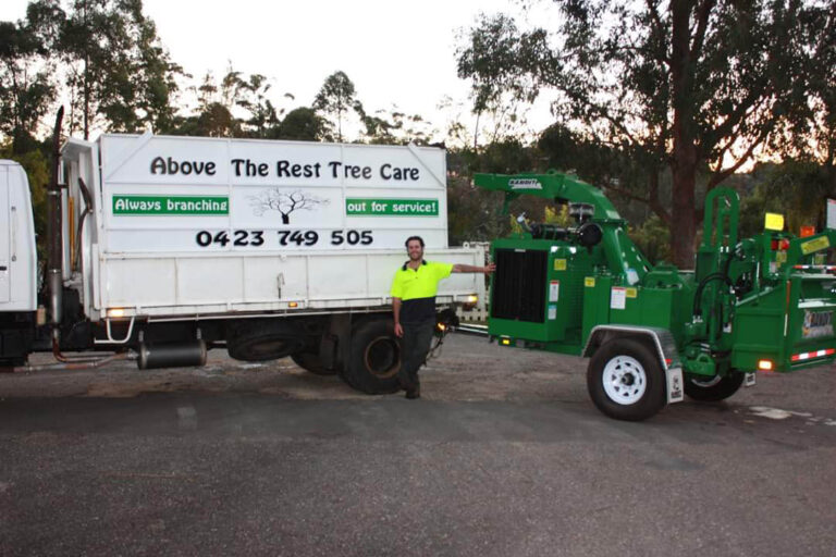 Tree Services in Ulladulla